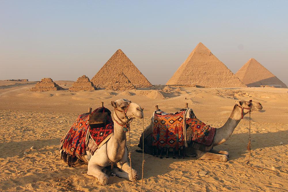 MyStory.me Movement erfolgreich in Ägypten gestartet